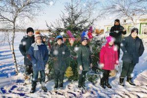 Read more about the article Экологическая акция «В лесу родилась ёлочка»